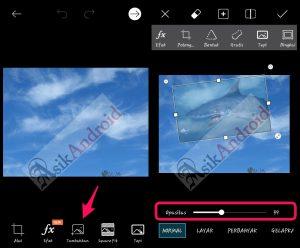Cara membuat foto kekinian binatang melayang di langit