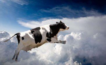 membuat foto melayang di langit