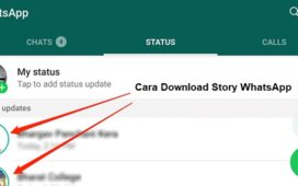 Cara Download Story WhatsApp